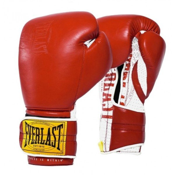Everlast 1910 Classic Sparring Boxing Gloves - Velcro 2