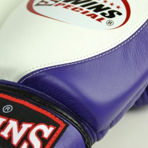 Twins Special 2 Tone Boxing Gloves