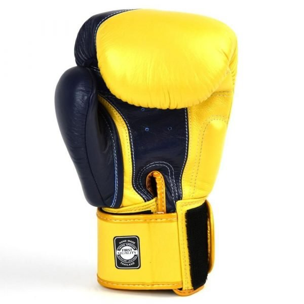 Twins Special 2 Tone Boxing Gloves Front